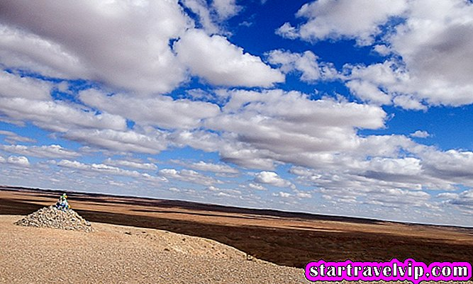 mongolia gobi desert tour review