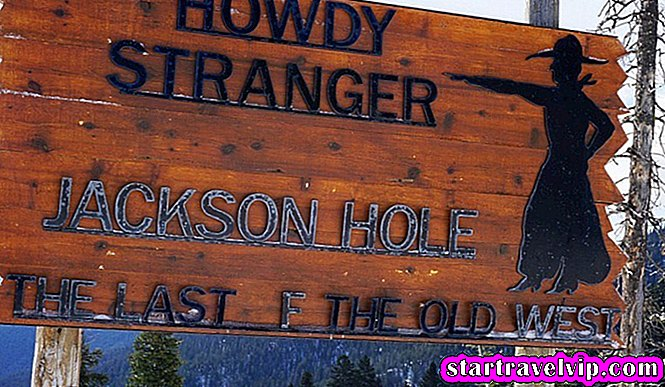 Jackson Hole Food Tour Bewertung